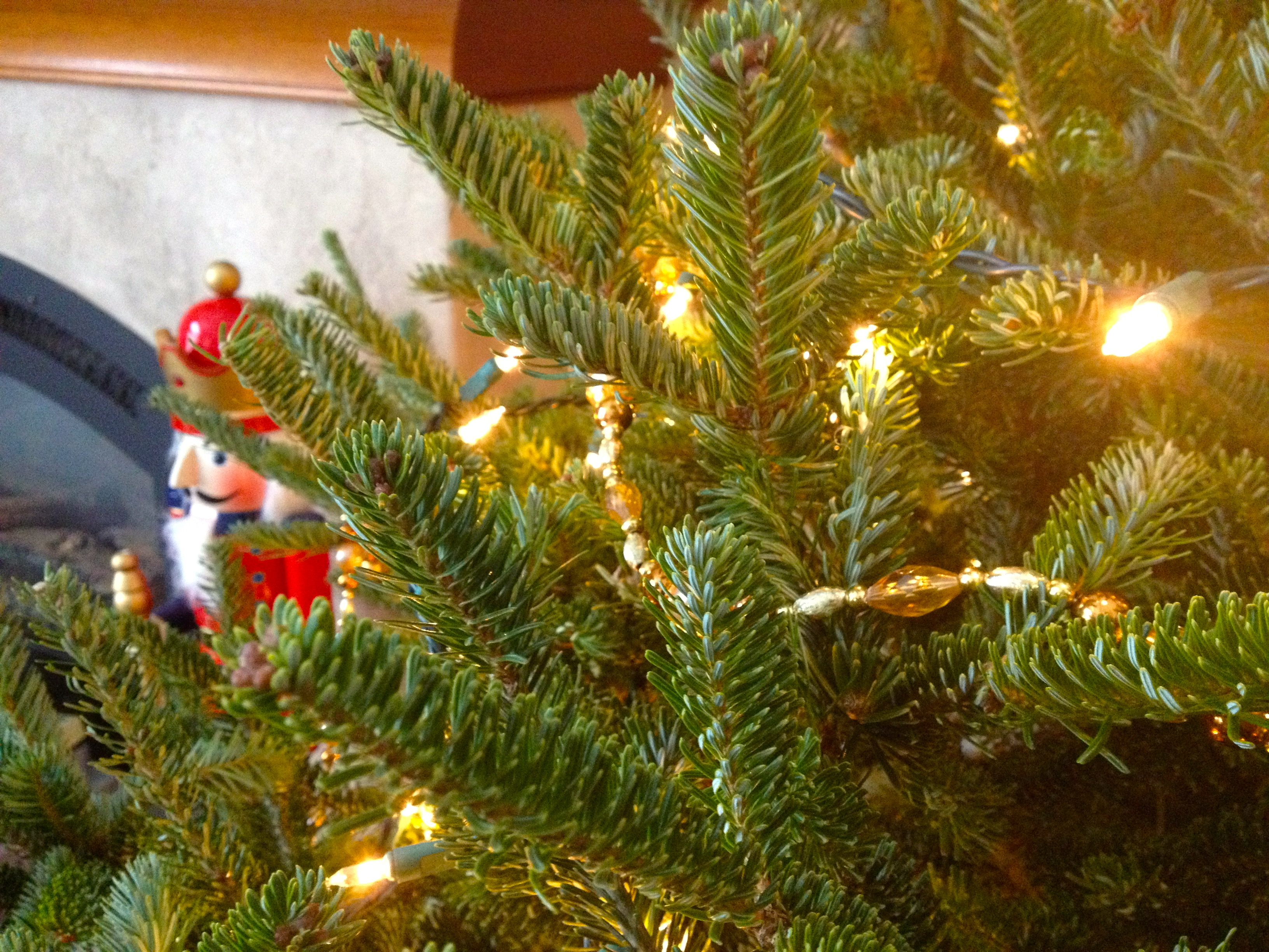 12:22-christmas-tree