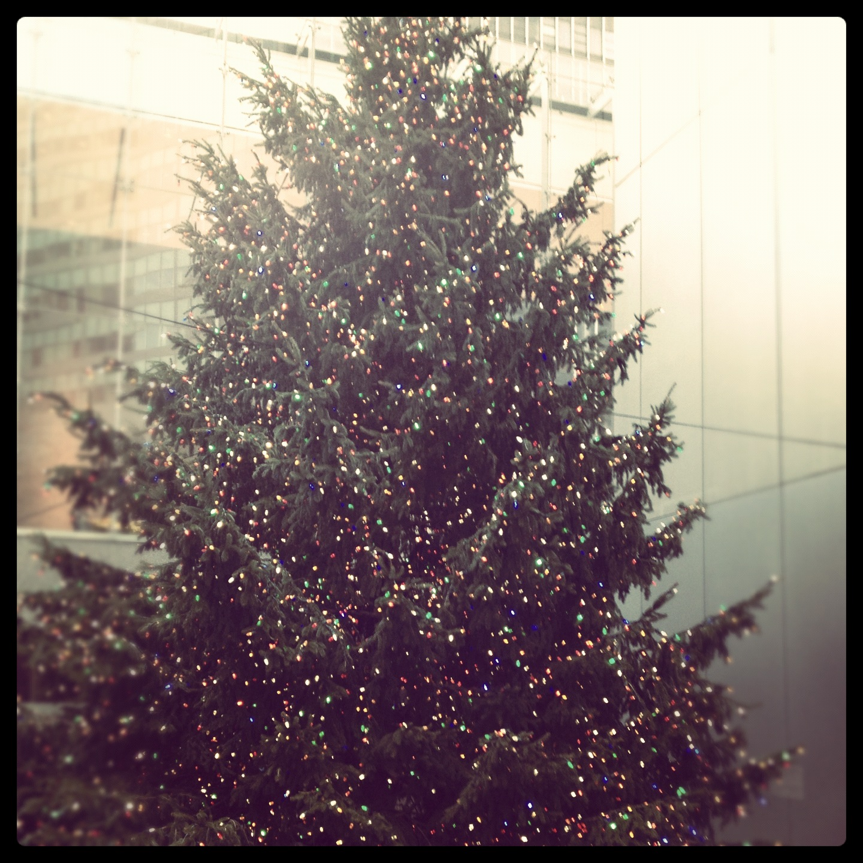 12:6-christmas-tree
