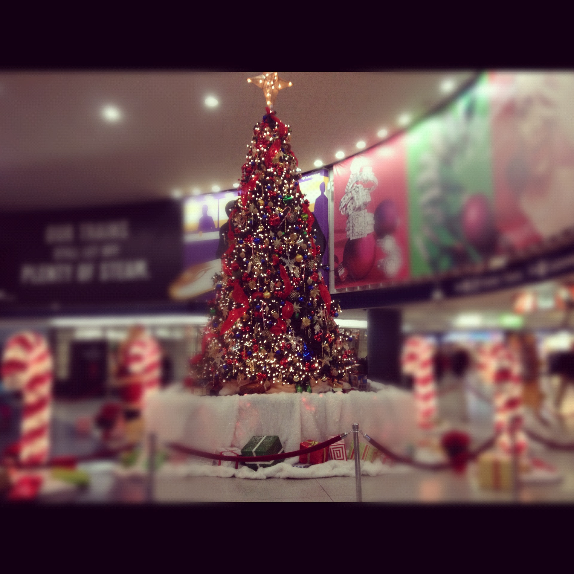 12:8-penn-station-christmas-tree