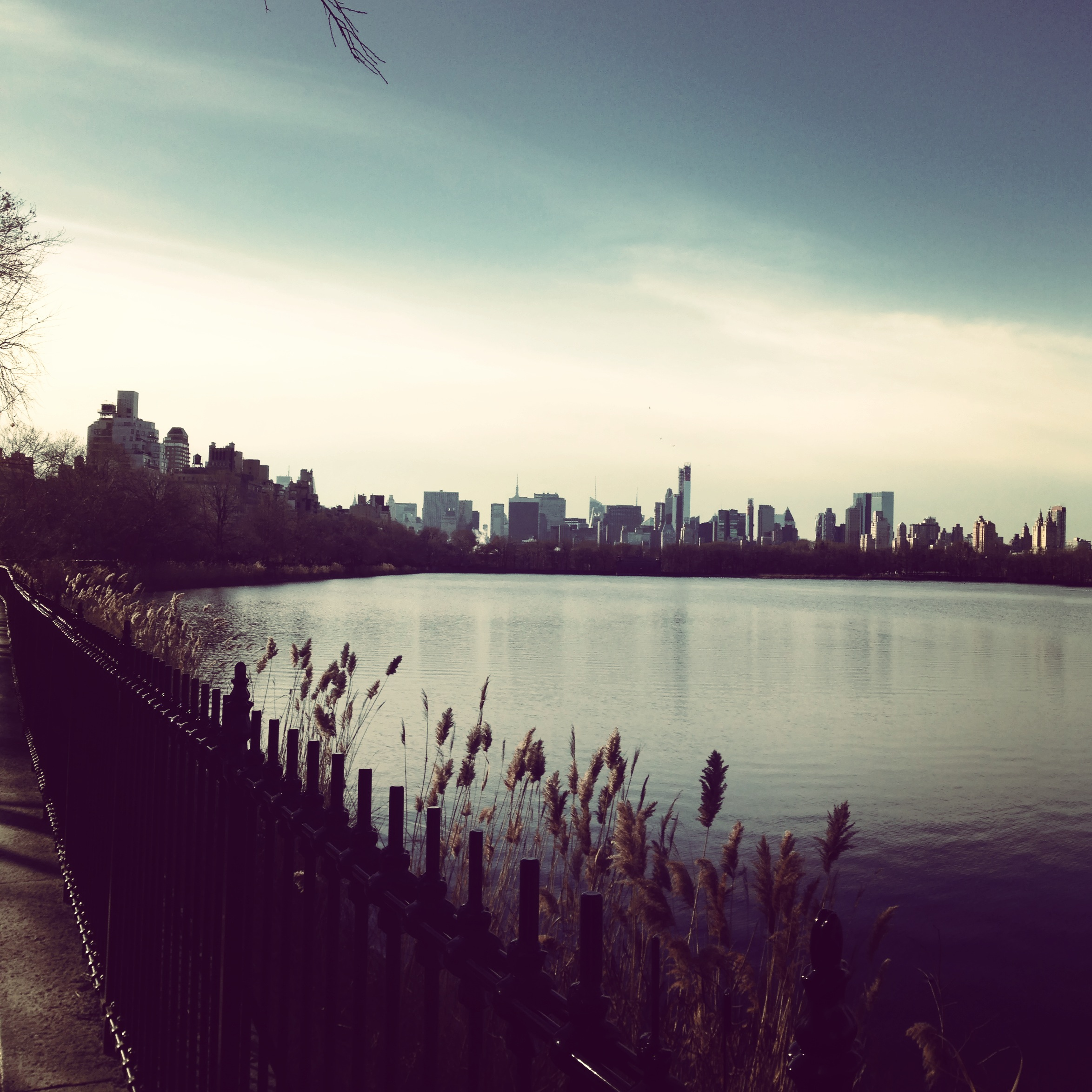 central-park-nyc2